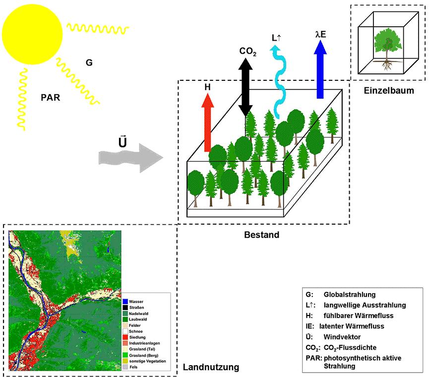 Forstmeteorologische Skalen