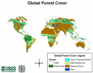 Globale Waldverteilung 2000 (USGS, 2000)